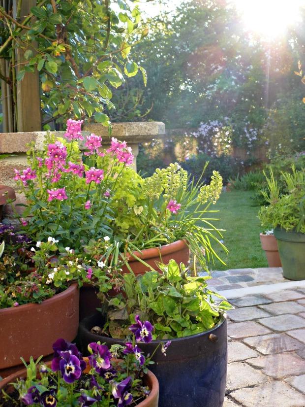 7am spring garden