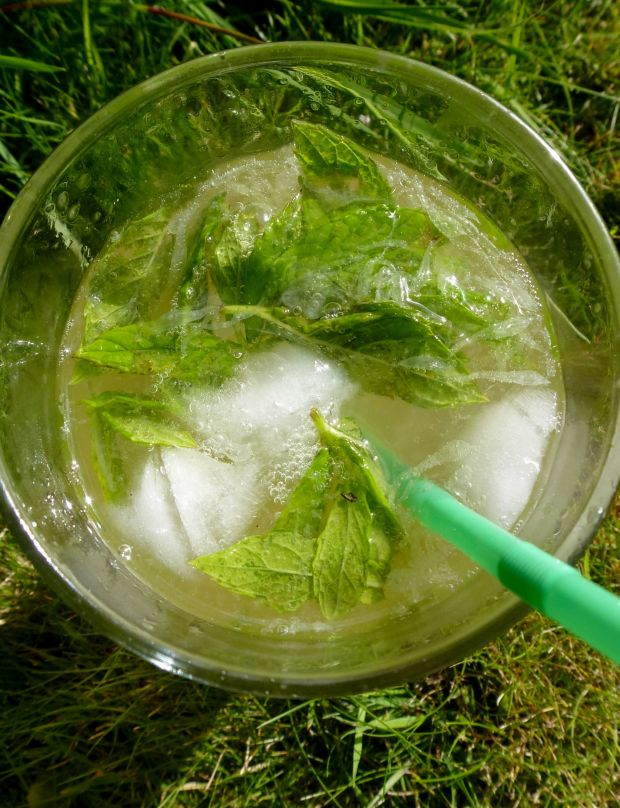 Mojito in the garden