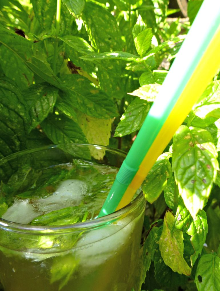 Mojito in the mint!