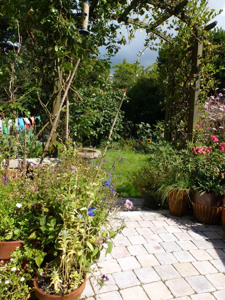 A late summer garden