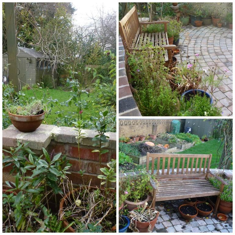 november garden Collage