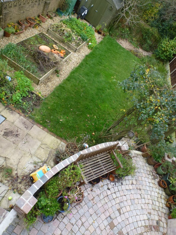 november garden from above