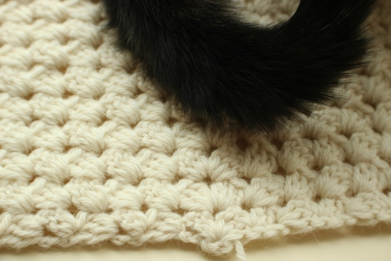 cat tail.