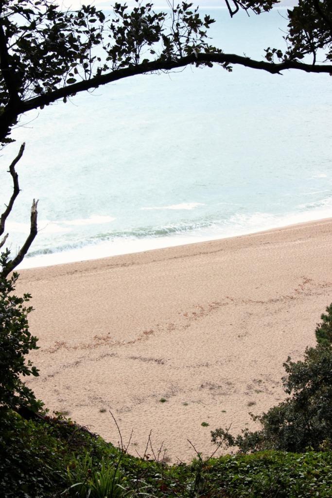 Sea view. Blackpool Sands - Copy