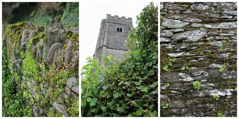 Walls and stuff. Stoke Fleming.