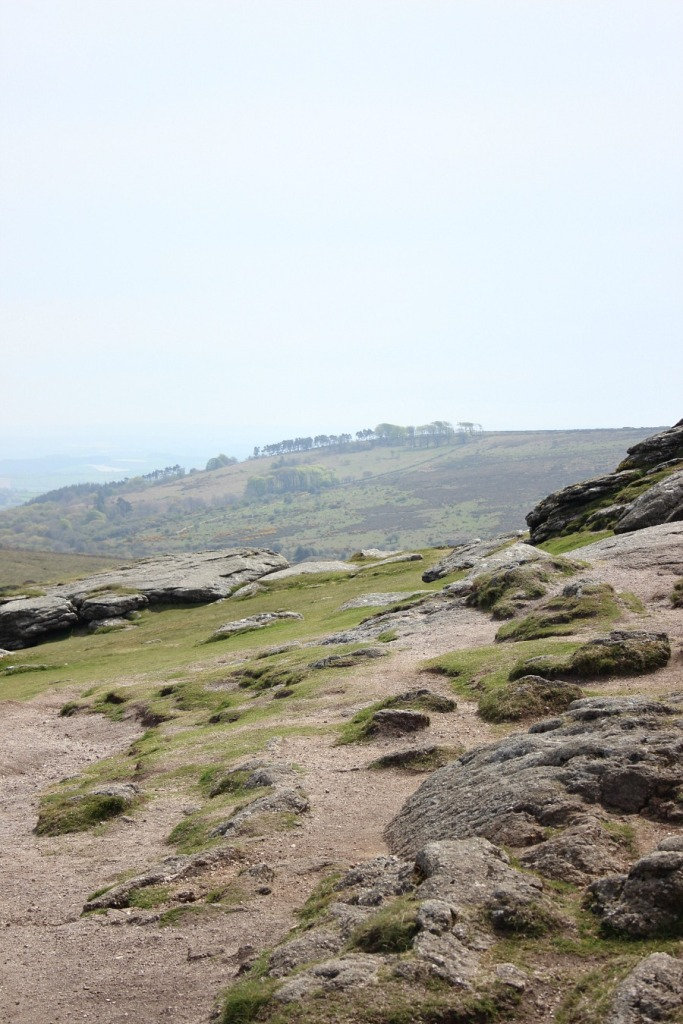 Haytor views