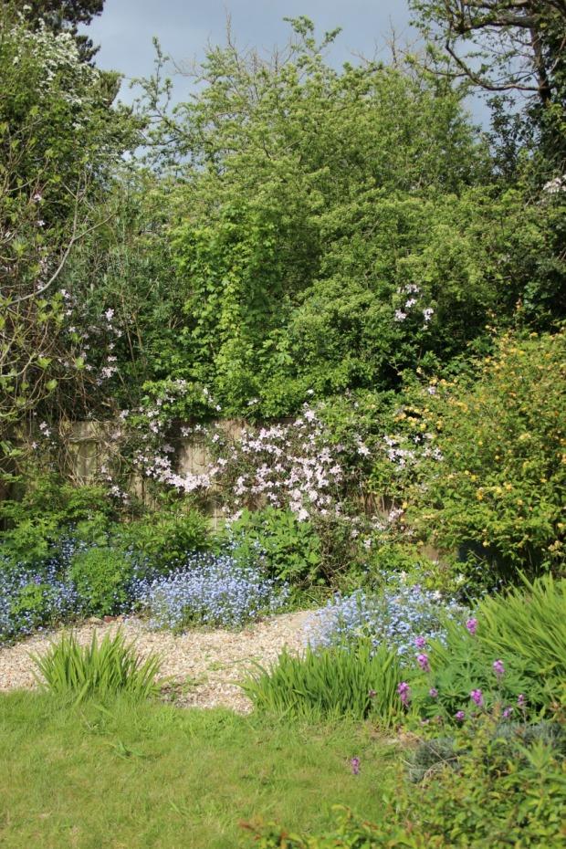 spring flower beds