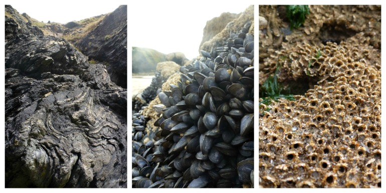 on-the-rocks-at-llangrannog